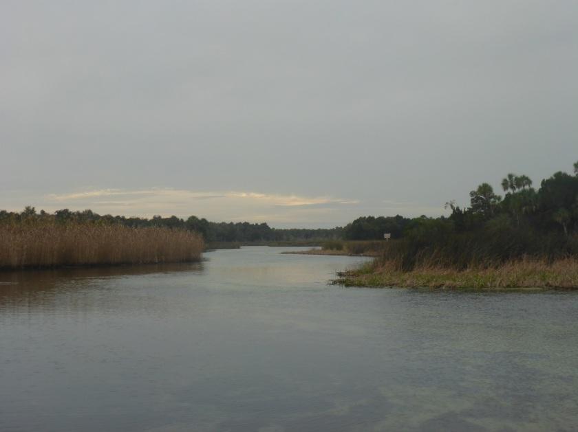 Halls River
