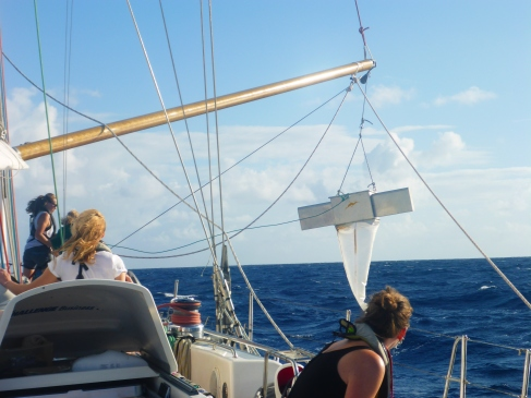Exxpedition in the Caribbean