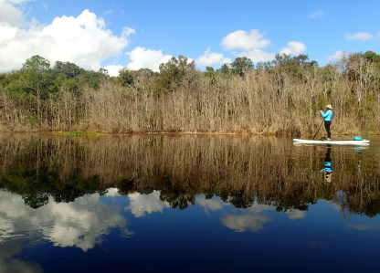 Paddleboarding on the Ocklawaha River