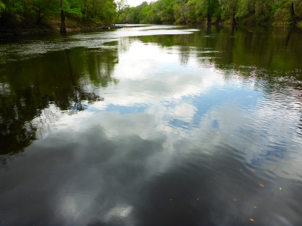 Blue skies on the Suwannee River.jpg