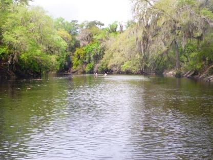 Drifting down the Suwannee River