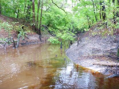 Flooded spring run
