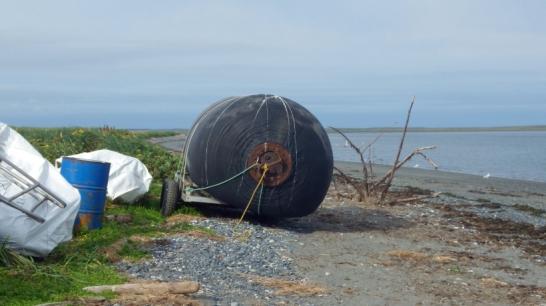 imgp3609-one-of-5-yokohama-fenders-removed-from-tugidak-island-alaska.jpg