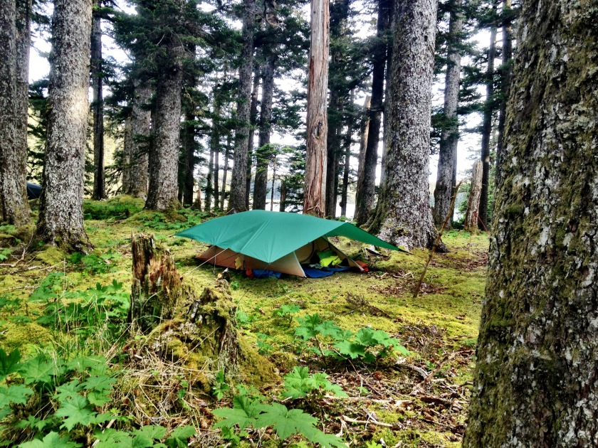 Tent at Big Bay ranger station, Alaska