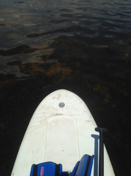 Loaded Paddleboard