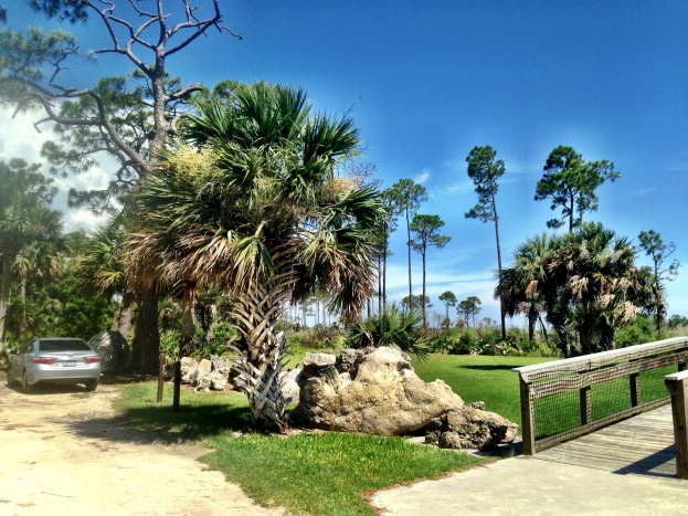 Hagens Cove Park