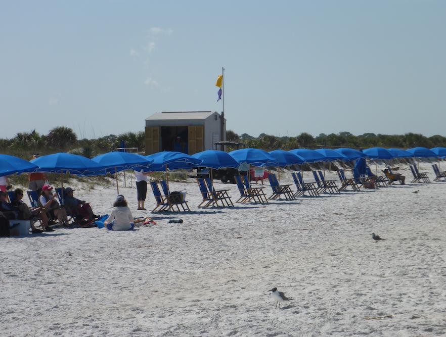 Umbrellas on beach