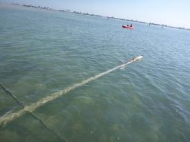mast lying in water