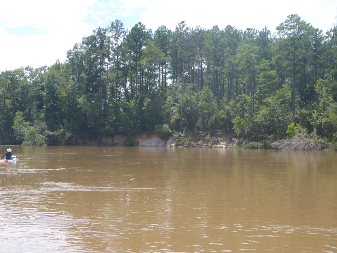Sand bluffs on the Choctawhatchee