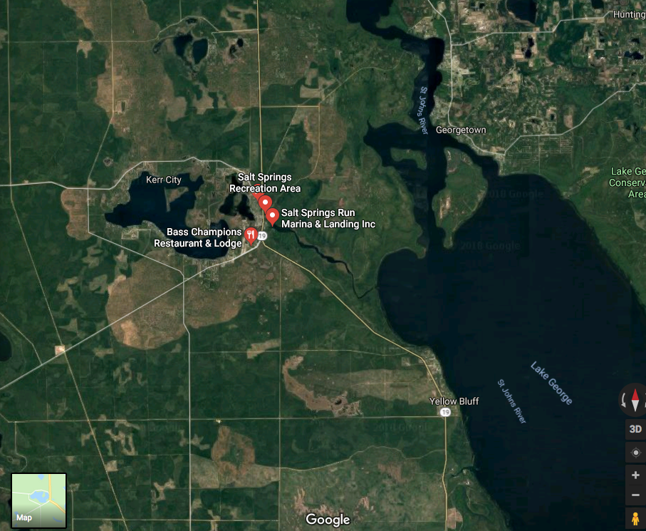 Salt Springs Area Map