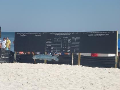 MT board